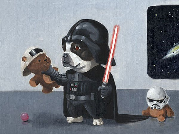 darth terrier darth vader dog