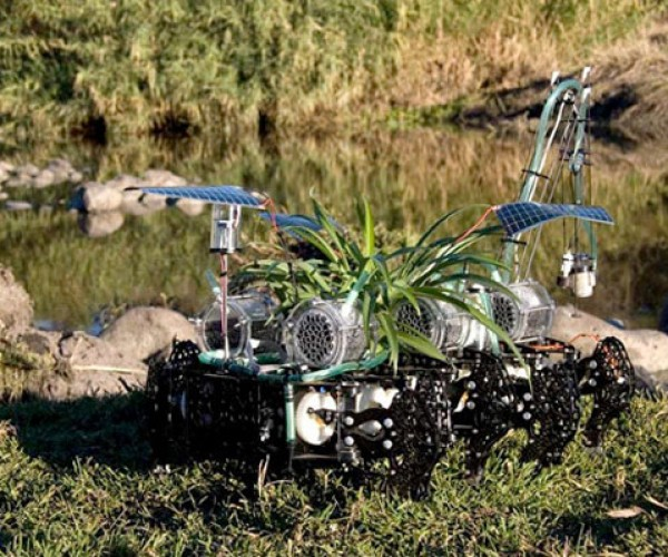 Cyborg Plant Goes on Walkabout