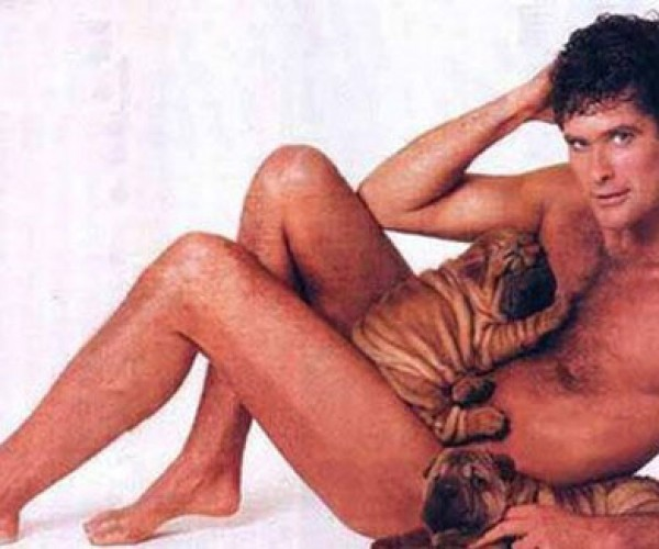 David Hasselhoff'S Voice Now Available on Navtones
