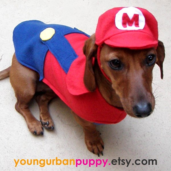 mario_dog_costume