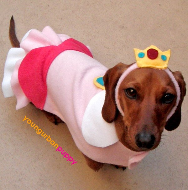 princess peach dog costume