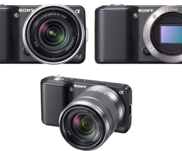 sony nex cameras 5