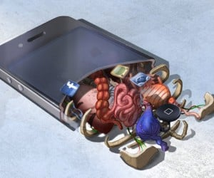 The Gross Anatomy of Gadgets