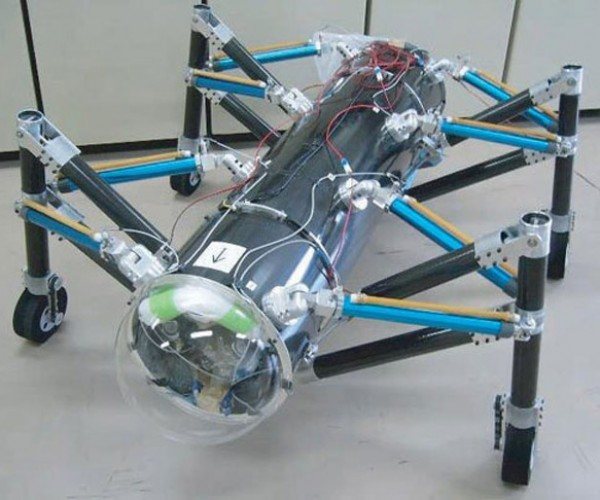 Robotic Grasshoppers Won'T Eat Your Crops