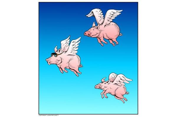 duke nukem pigs flying