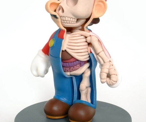 Super Mario Anatomy Lesson
