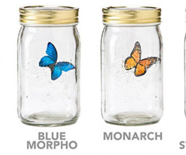 Thinkgeek Electronic Butterfly in a Jar is Weird