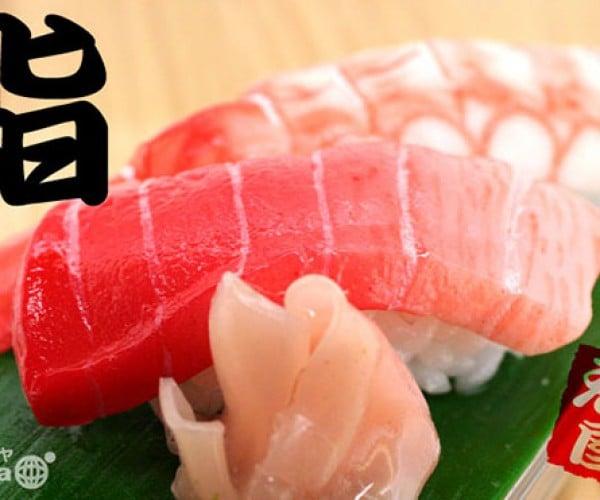 iphone 4 sushi case 4