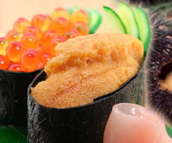 iphone 4 sushi case 5