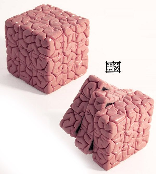 rubiks brain cube jason freeny 2