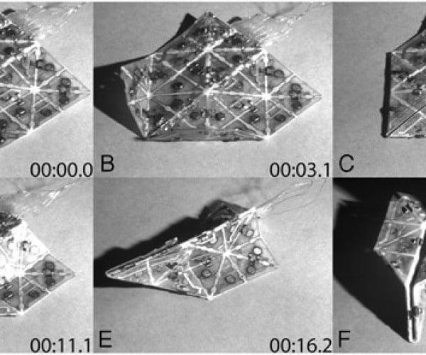 Self-Folding Origami Needs More Swans and Unicorns