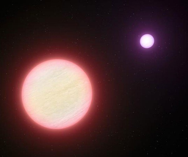 Coldest Star Ever Discovered by Astronomers, Still Too Hot For Vacationers