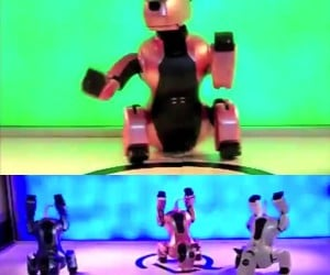 GENIBO Robot Dog Struts Its Stuff