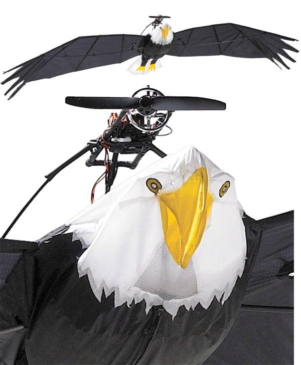 remote_controlled_eagle