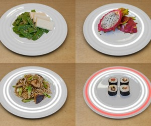 The Fukushima Plate Makes Sure Your Food Ain't Garnished With A Side Of Radiation