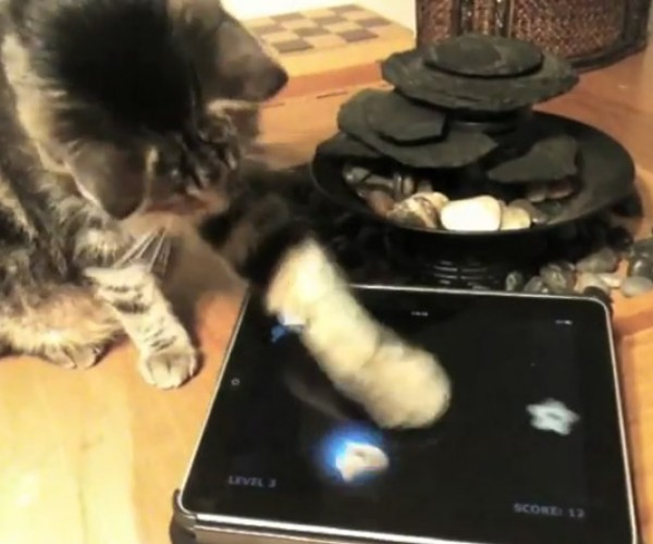 Friskies Offers iPad Games for Cats Who Can Afford an iPad