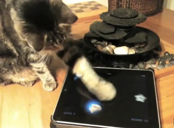 Friskies offers ipad games for cats who can afford an ipad for Friskies cat fishing