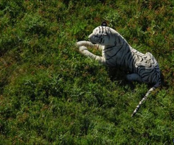 OMG! Run! A Tiger is Loose! Oh wait… Nevermind