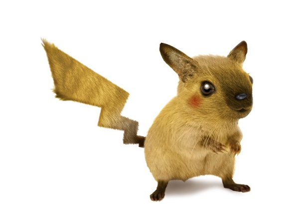 real life pokemon by stephen lefcourt