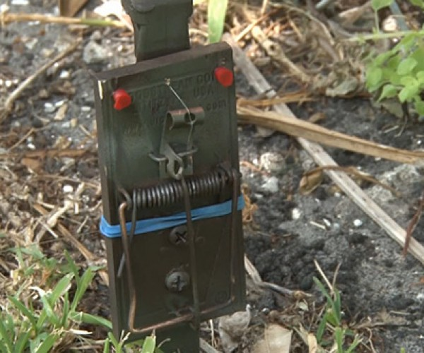 DIY Tripwire Bang Alarm: For Protection and Pranks