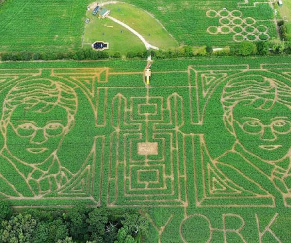 Harry Potter Maize Maze: Sending Him Off in Style