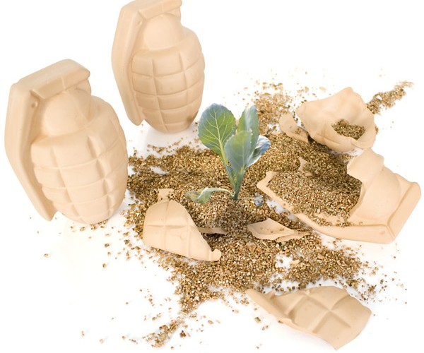 Flower Grenades: For Peaceful Eco-Terrorists