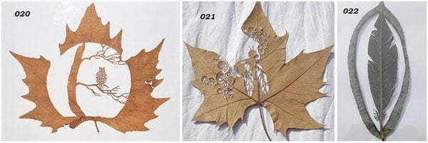 leaf art owl