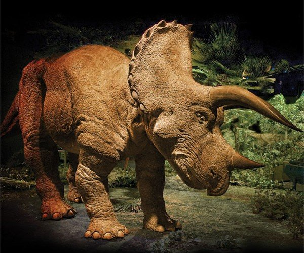 Own Your Own 20-Foot Triceratops for Just $350k