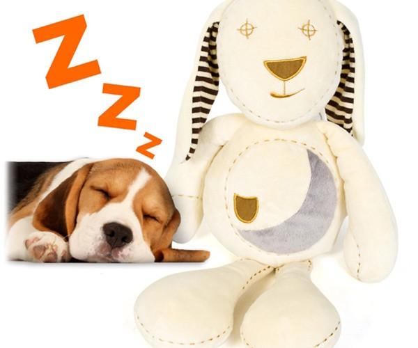 Sleepy Bunny Helps Pups Sleep Through the Night