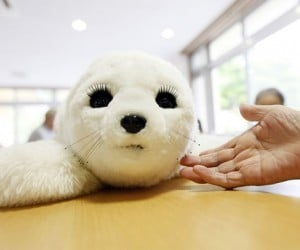Paro the Robot Seal Helps Elderly Recover from Nuclear Disaster