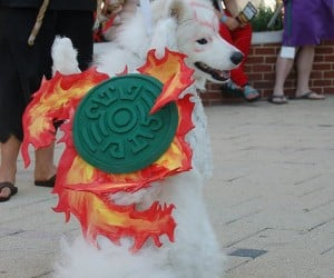 Ultimate Amaterasu Cosplay: Ōkami Dog!
