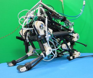 PIGORASS 4-Legged Robot Jumps and Gallops on Its Own
