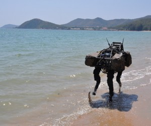Boston Dynamics BigDog Robot: Will it Eat PIGORASS for Lunch?