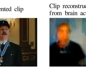 Researchers Read Brain Signals to Recreate Video