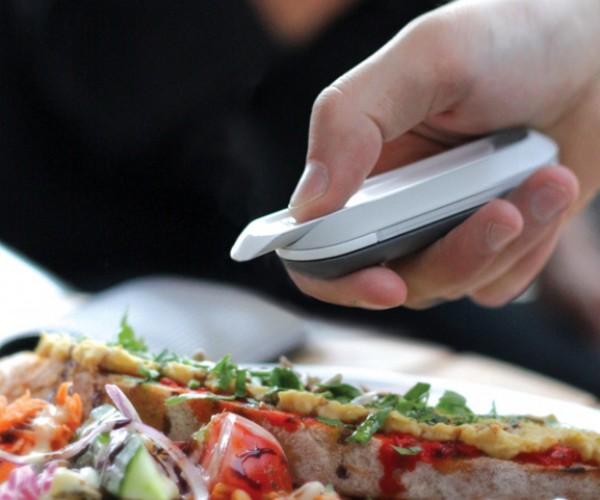 Food Allergen Detector Concept: the Digital Nose Knows