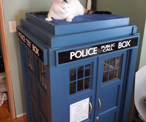 TARDIS Cat Fortress: Whiskers are Cool!
