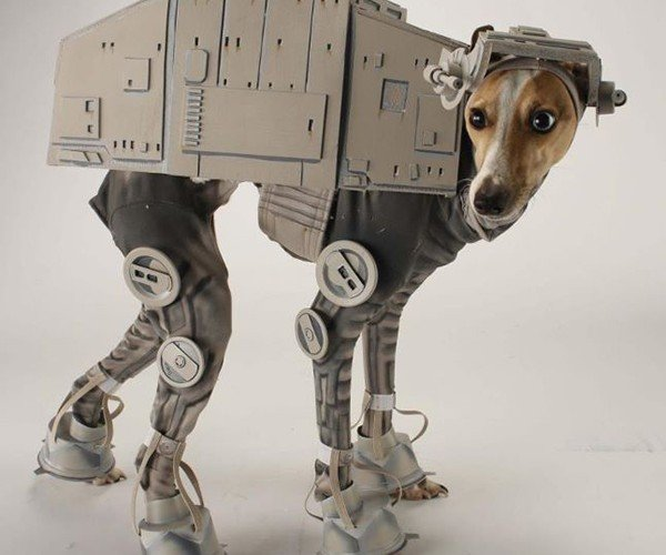 Bones Mello: AT-AT Dog
