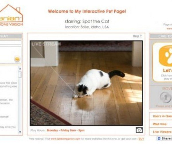 iPet Companion for People Who Can't Bear to Leave Their Pets Alone