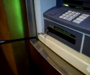 While Humans Occupy Wall Street, Snake Occupies ATM