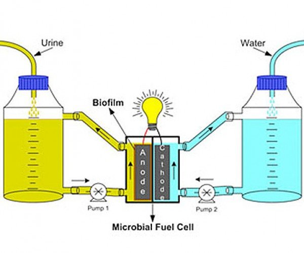 Researchers Try to Turn Urine into Biofuel, Destined to Celebrate with a Urinal Cake