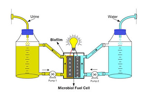 urine_to_fuel_cell_conversion