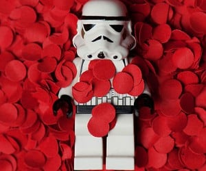 LEGO Stormtrooper in American Beauty: Say What?