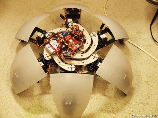 MorpHex Robot