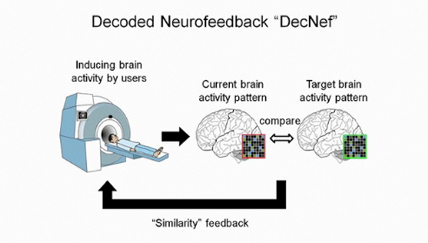 decoded neurofeedback automated learning
