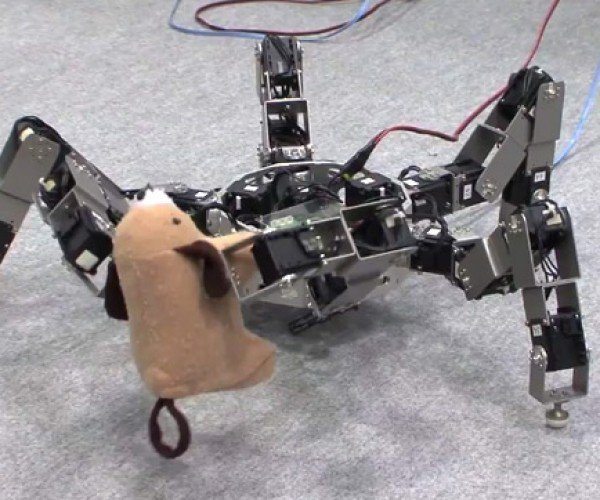 Six Legged Insect Robot Picks Up Prey in Its Jaws of Death