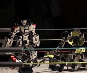 Robot Wrestling is Strangely Exciting