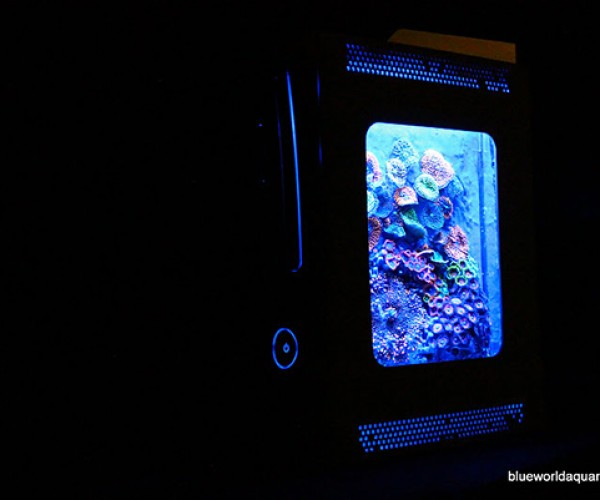 xbox 360 aquarium by blue world aquariums 3