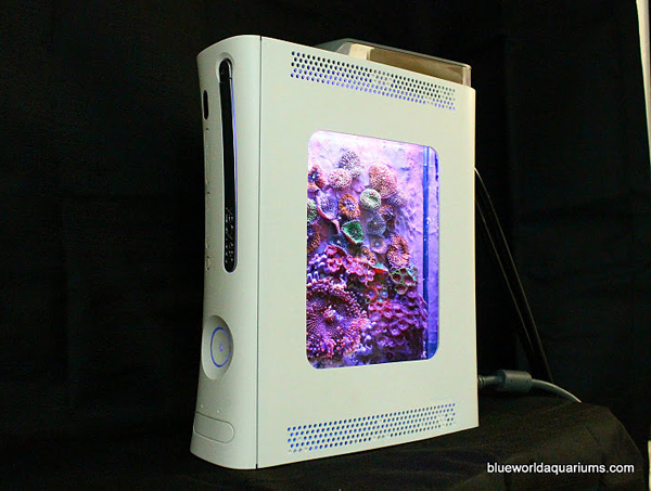 xbox 360 aquarium by blue world aquariums