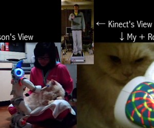 Kinect-Controlled Cat Brushing Robot: One Small Step for Robot, One Giant Motion-Controlled Leap for Mankind