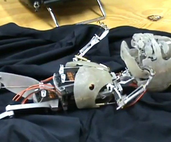 Skinless Robot Baby is the Stuff Nightmares are Made of
